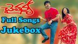 Chaitanya Telugu Movie Songs
