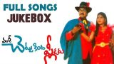 Chettu Kinda Pleader Telugu Movie Songs