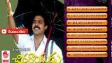 Chinna Rayudu Telugu Movie Songs