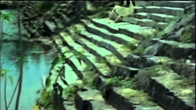 Poovaram Video Song    Aan Paavam