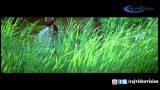 Unthan Rajiaththil Yarum Video Song | Aandan Adimai