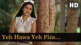 Yeh Hawa Yeh Fiza from Sadma Movie