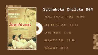 Seethakoka Chilaka BGM | Alaigal Oivathillai BGM